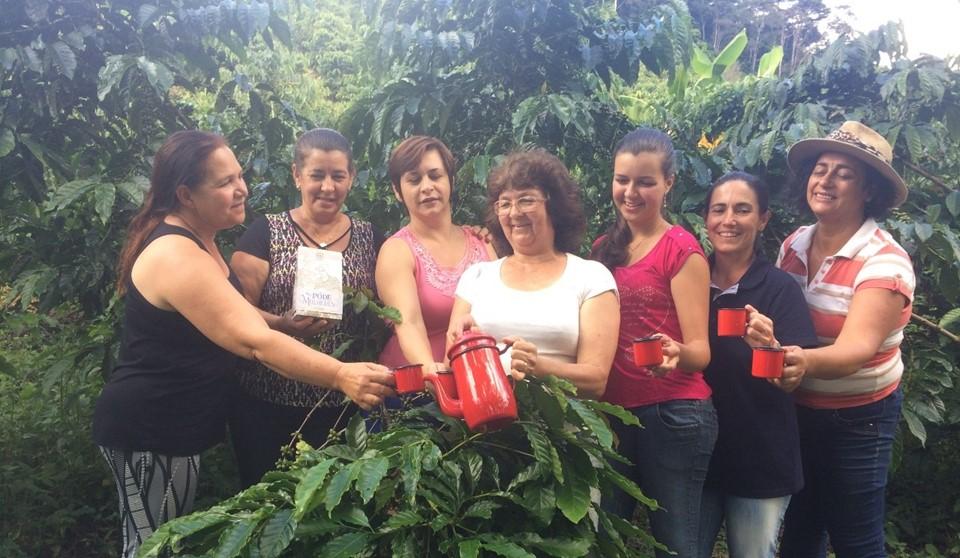 Cooperativa investe em café de alta qualidade produzido exclusivamente por mulheres